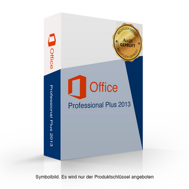 Microsoft Office 2013 Professional Plus Audit Sicher