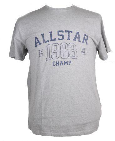 Allsize Rundhals T-Shirt mit Druck, grau melange