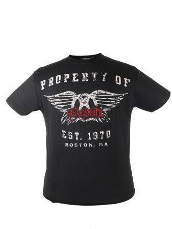 Aerosmith T-Shirt von Allsize bis 8XL, schwarz