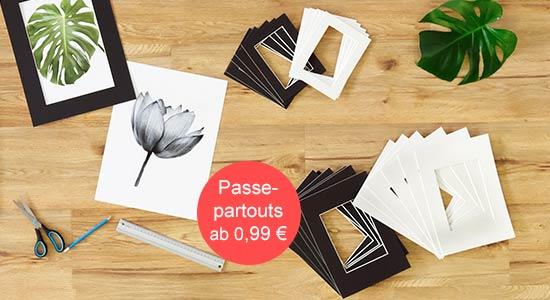 Passepartout kaufen schwarze und weiße