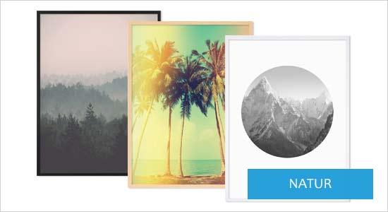 Poster für Bilderrahmen Natur Motive