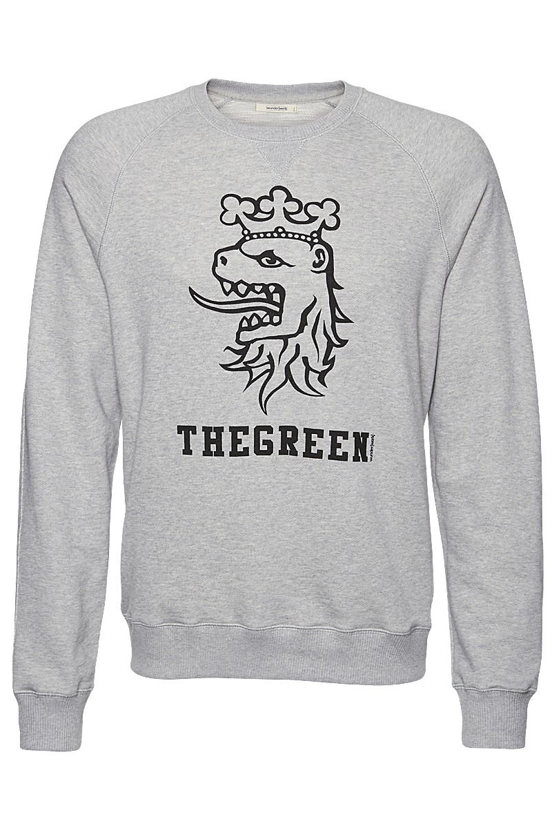 Sweat lion green print male