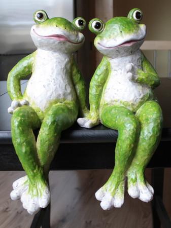 Frosch sitzend als Paar – Bild 1