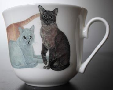 Roy Kirkham Frühstückstasse mit Untersetzer; Cats Galore – Bild 2