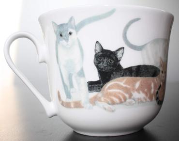 Roy Kirkham Frühstückstasse mit Untersetzer; Cats Galore – Bild 5