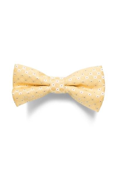 Ivory White bow tie with a bright polka dot pattern