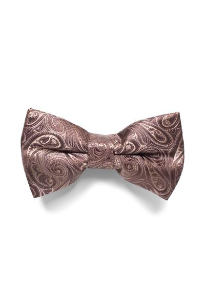 Classic bow tie with fashionable paisley pattern