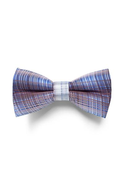 Checked bow tie in blue tones