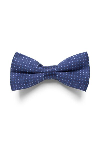 Blue bow tie with dot pattern