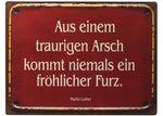 Blechschild - Aus einem traurigen Arsch - Shabby Antik Nostalgie Schild H26