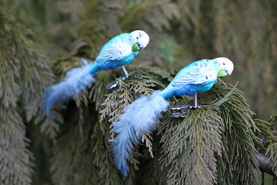 Clip Vogel Papagei Wellensittich Christbaumschmuck Mit Federn Blau