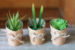 Pflanze im Topf Kunstpflanze Deko Pflanze Topfpflanze, 3er Set