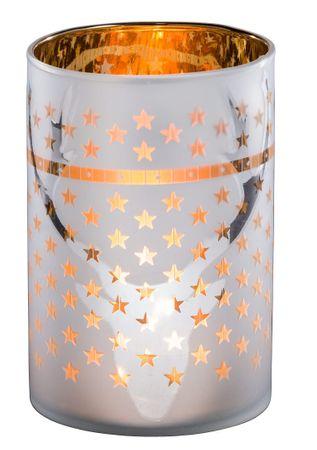 Windlicht - Elch - Glas Teelichthalter Kerzenhalter matt H 13,5cm