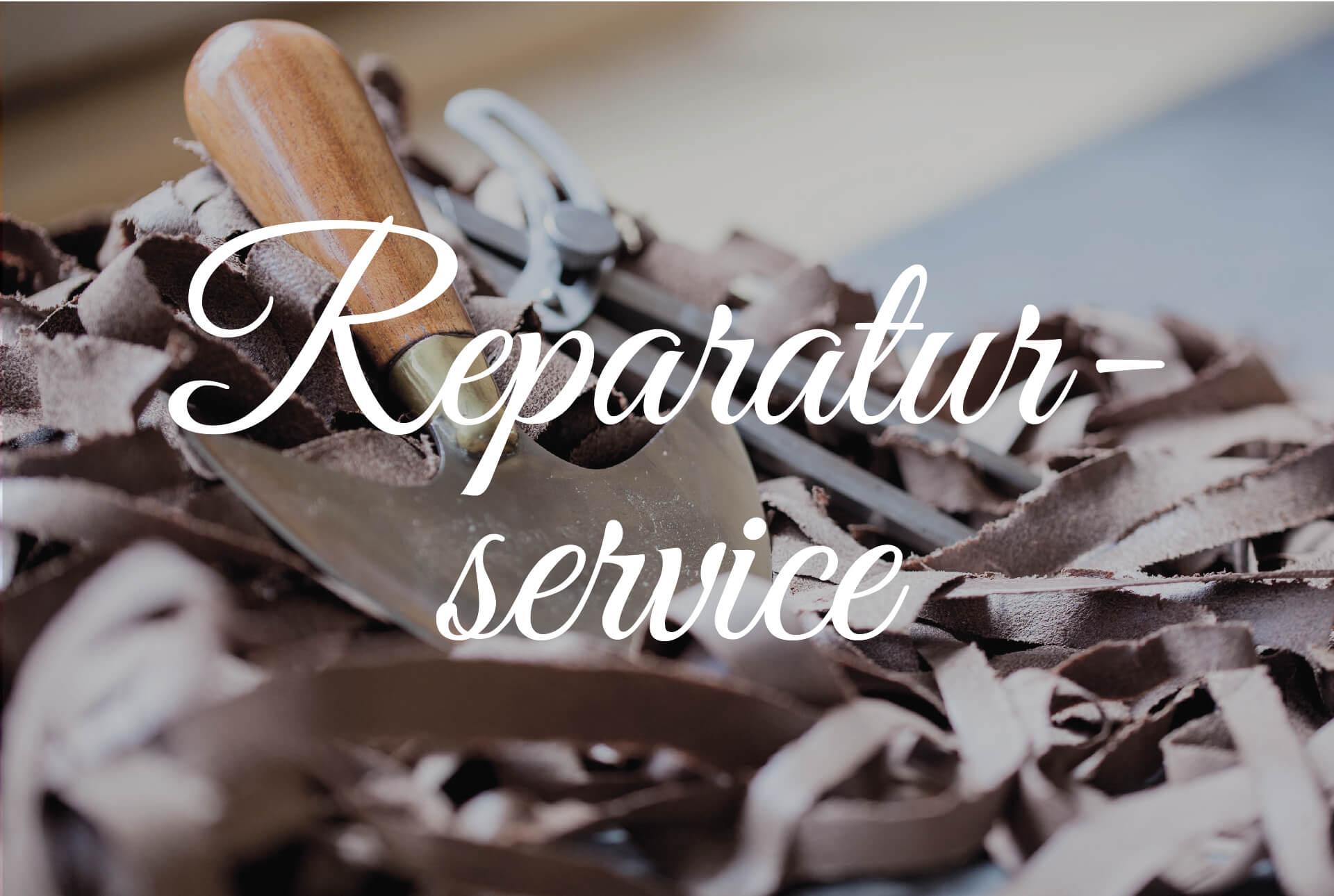 Pflege- & Reparaturservice