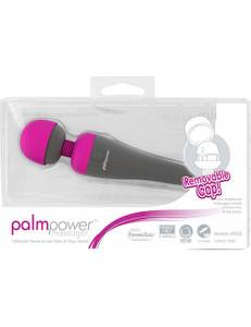 BMS - PalmPower Massager