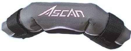 Ascan - Boomprotector
