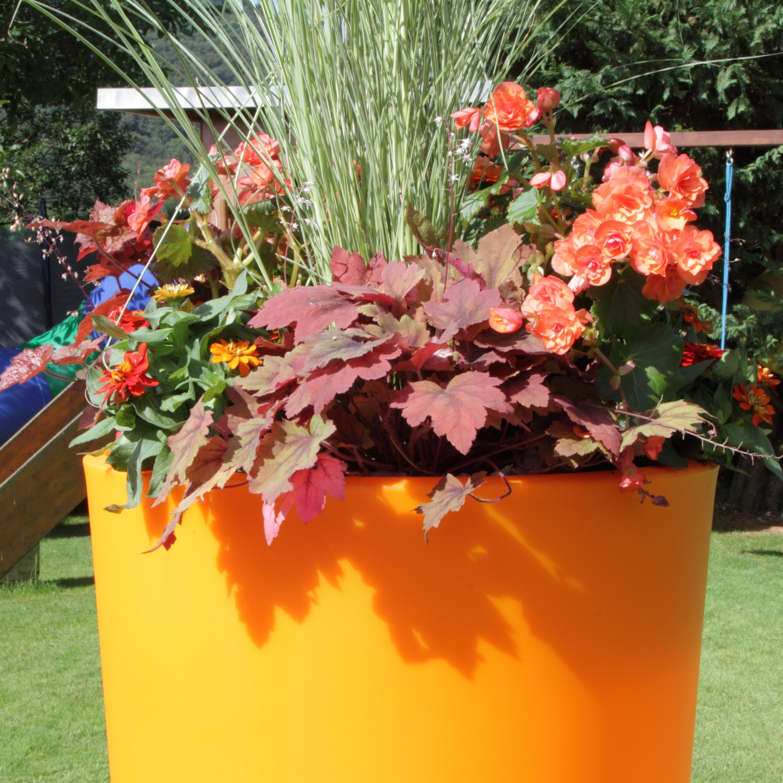 regentonne rainbowl flower 150 liter mango. Black Bedroom Furniture Sets. Home Design Ideas