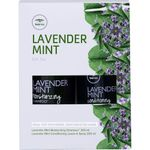 Paul Mitchell Tea Tree Lavender Mint Gift Set Duo - Shampoo 300 ml + Conditioning Leave-In Spray 200 ml 001