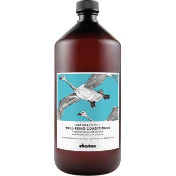 Davines Naturaltech Well-Being Conditioner 1000 ml