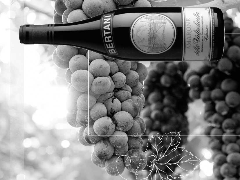 Weinabend mit der Kollektion von Cantine Bertani bei Victoria Weine Bad Mergentheim
