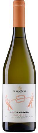 Pinot Grigio delle Venezie Soligo Magnum - Colli del Soligo - Weißwein