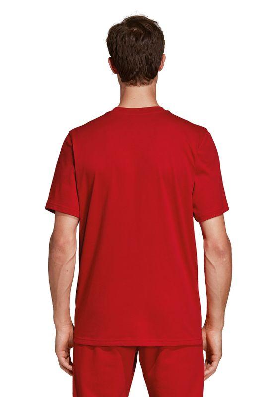 Adidas Originals T-Shirt Herren TREFOIL T-SHIRT DX3609 Rot – Bild 3