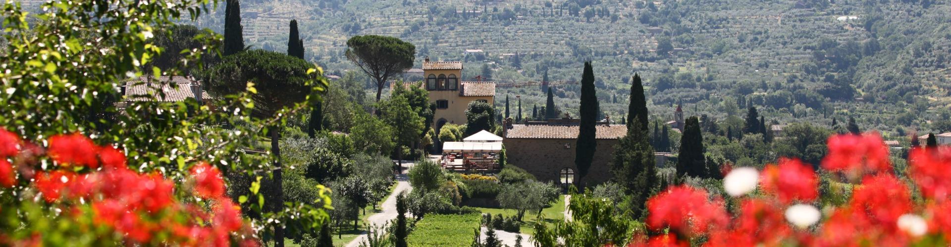 Ausblick auf das Weingut Baracchi