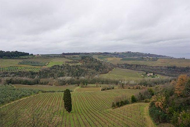 Orme in Rosso 2009 – Bild 7