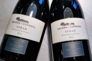 Syrah 2013 001