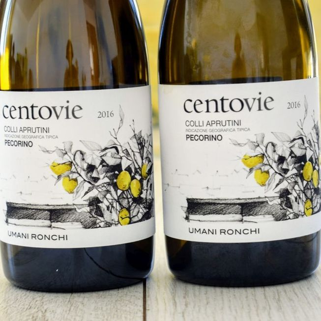 Pecorino 2016 Centovie – Bild 1