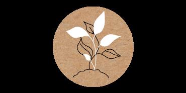 Nachhaltigkeit Biozoyg