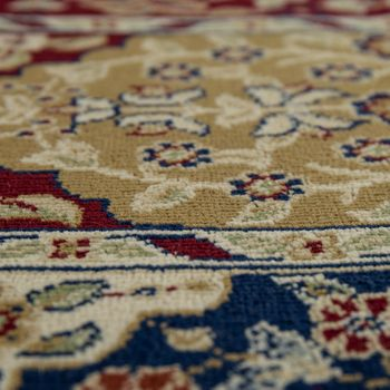 Oriental Rug Traditional Persian Look Border Ornaments Red Blue Beige – Bild 3