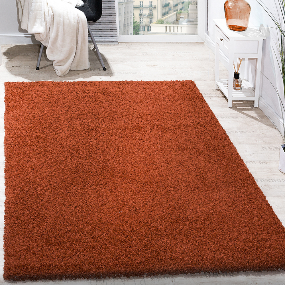 Shaggy Rug High Pile Long Pile Modern Carpet Uni Terracotta Sale