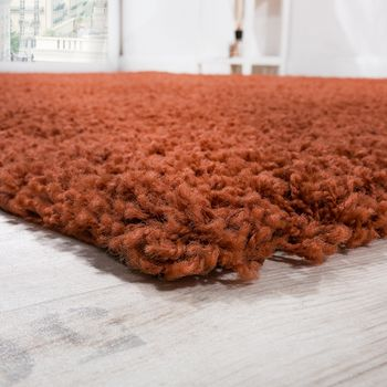 Shaggy Rug High Pile Long Pile Modern Carpet Uni Terracotta Sale – Bild 2