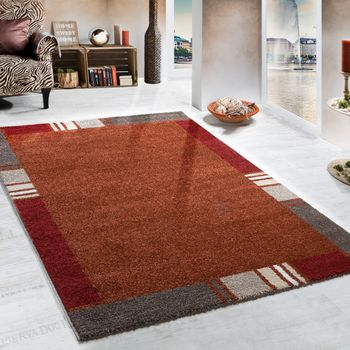 Heavy Woven Rug Modern Design Carpet In Terracotta Beige Border Style Top Quality – Bild 1