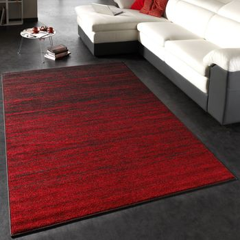Modern Designer Carpet Red Brown
