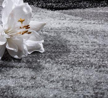 Designer Teppich Modern Geschwungene Wellen Linien Muster Kurzflor Meliert Grau – Bild 3