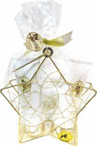 Embassy Deluxe No. 231, Aloe Vera, Beauty & Wellness Geschenkset (3-teilig) von Raphael Rosalee Cosmetics