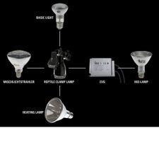 Solar Raptor HID-Vorschaltgerät, elektronisch 35 / 50 oder 70 Watt 2