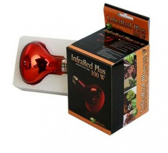 Reptiles Planet Infra Red Plus 100 Watt
