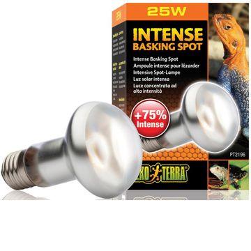 Exo Terra Intense Basking Spot 25 Watt Tageslichtlampe 001