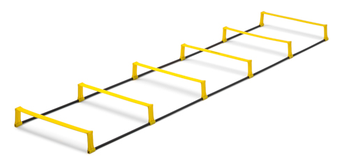 T-PRO hurdle ladder (foldable) - 6 rungs