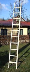 Holzleiter Sprossen-Anlegeleiter 3,0 Meter