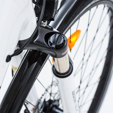 28 Zoll Elektro Trekking Fahrrad 10 Gang Nihola Hybrid – Bild 6