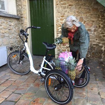 24 Zoll Elektro Dreirad Cyclo2 Comfort24 3-Gang  bronzefarben – Bild 3