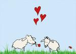 Mea Living Postkarte Happy Schafe mit Herz