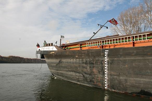 Angeln am Rhein auf Zander